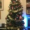 albero di Natale con decorazioni rosse