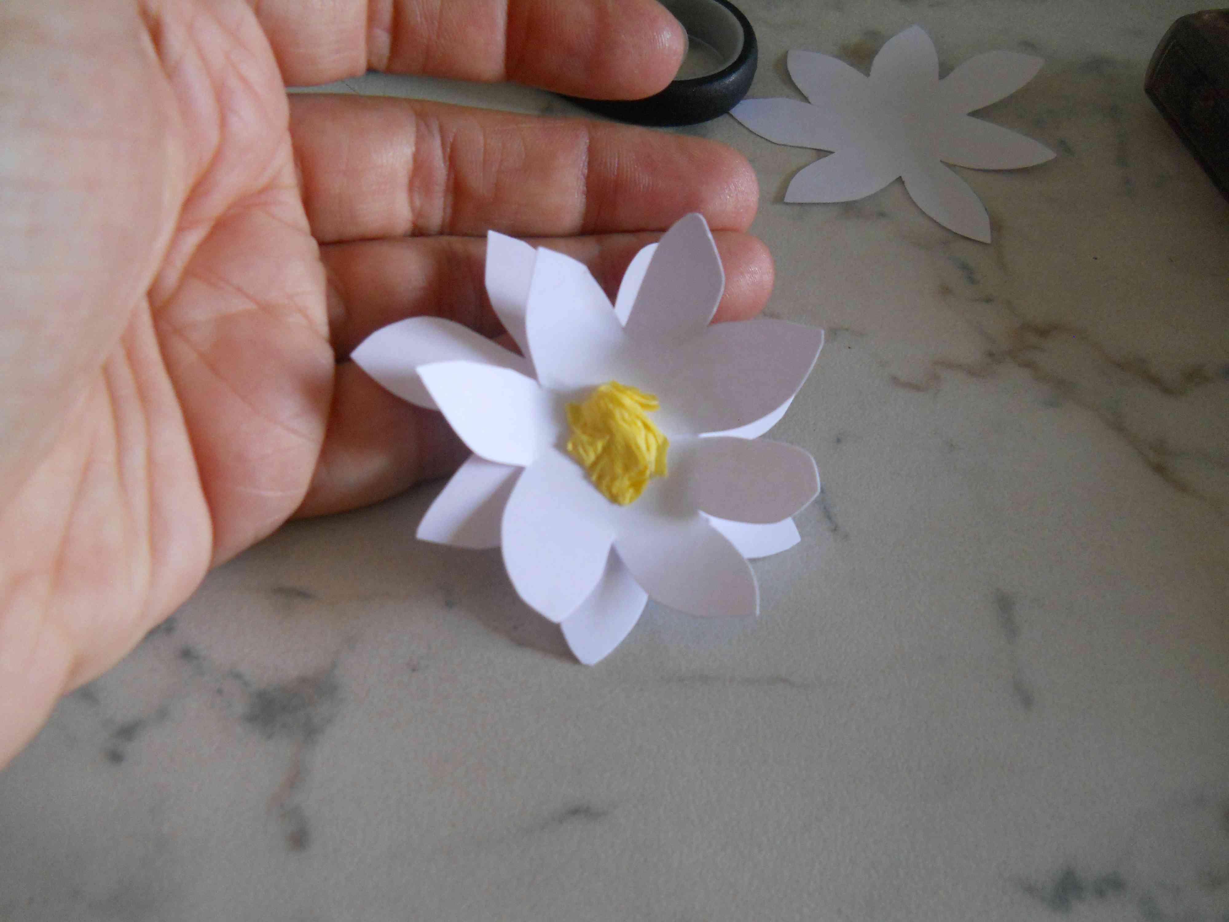 Fiore in cartoncino bricolage ricette for Fiori di cartoncino