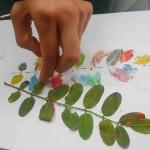 stampa con foglie 2