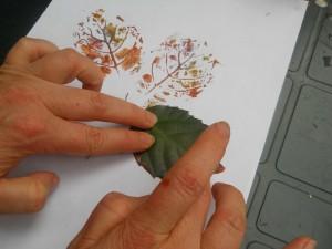 stampa con foglie vere