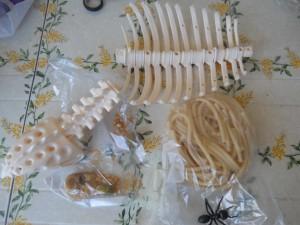 contenuto Halloween Mistery Box Bricolage & Ricette